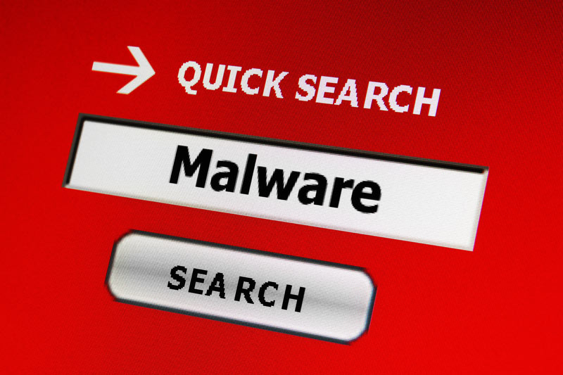 Why Malware Protection is Critical for Your Business
